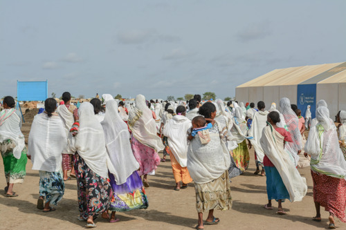 Hepatitis E cases in Sudan's Tigray refugee camps highlights shortcomings of international humanitarian response