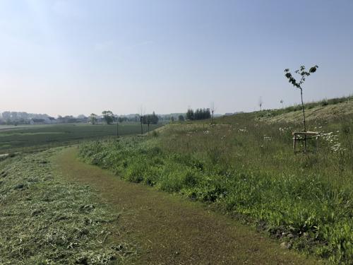 Geluidsberm schermt dorp Zwankendamme af van transport- en haveninfrastructuur Zeebrugge