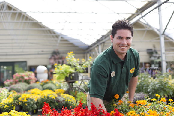 Pike Nurseries Associate