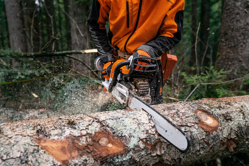 STIHL technologie ontvangt Award of Excellence