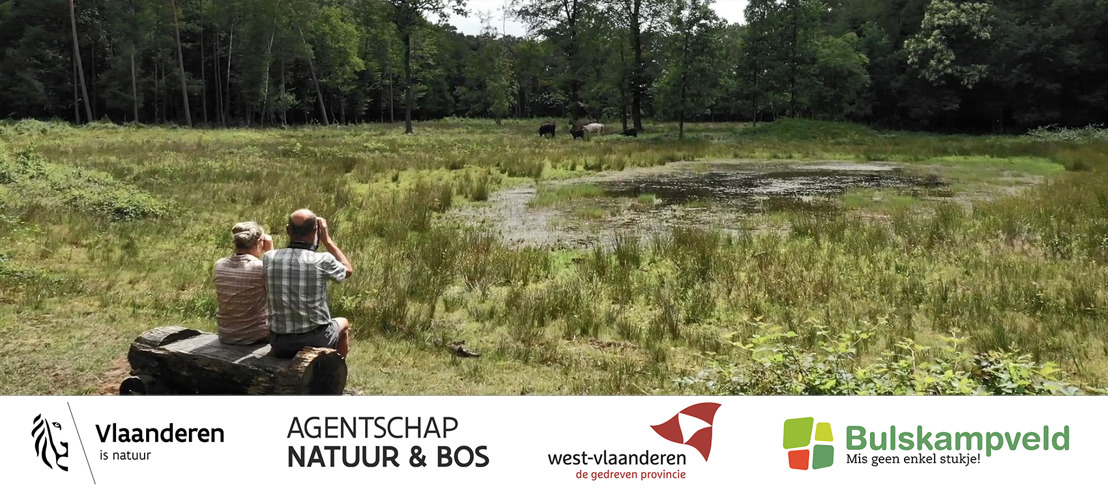 Nieuw filmpje Landschapspark Bulskampveld toont prachtige natuur