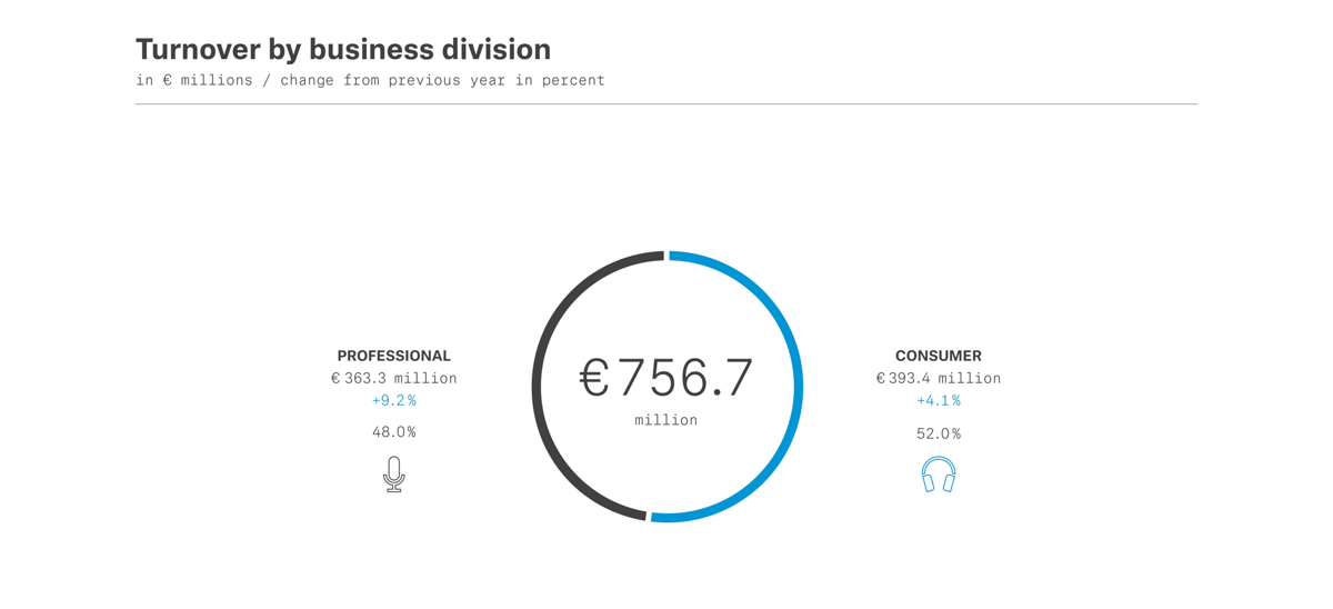 Turnover by business division 2019
