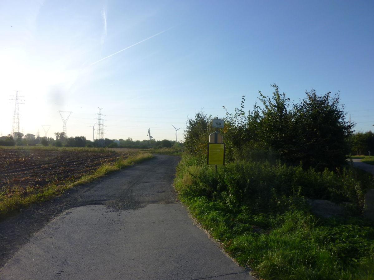 Wildestraat (huidige toestand)