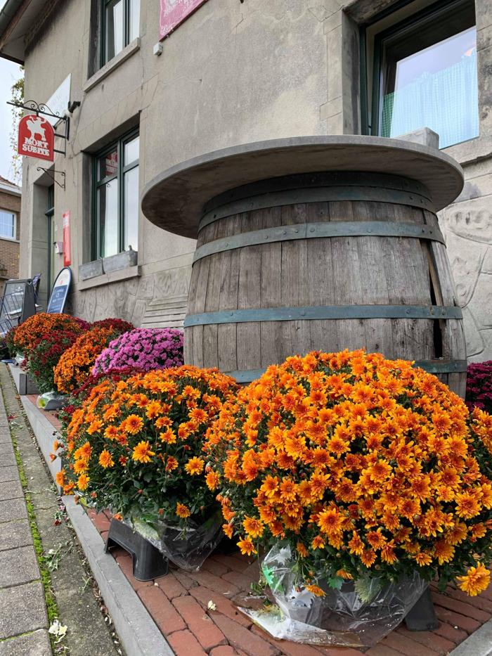 """Exclusief norbertijnenbier uit Heverlee voortaan ook in het """"beste café ter wereld"""" verkrijgbaar"""