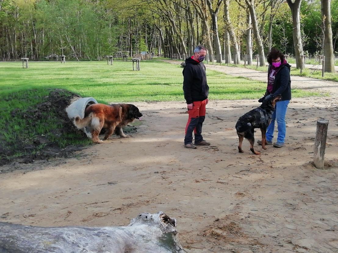Hondenlosloopzone in Oostkamp in gebruik genomen
