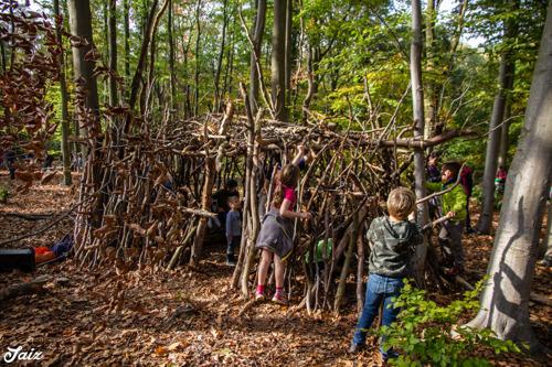 Ravotten in het bos op 13 oktober