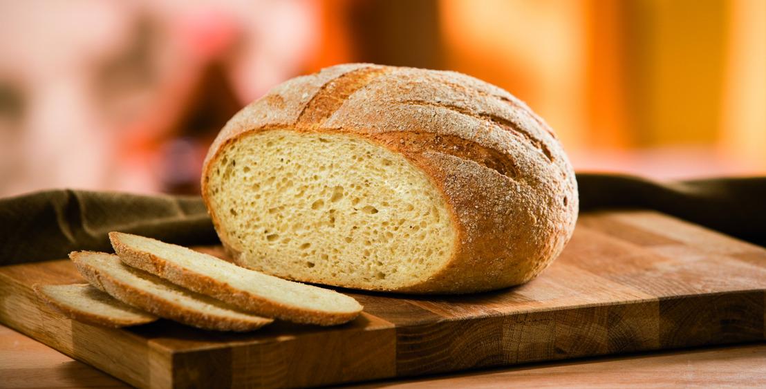 Verlaag je cholesterol met zelfgebakken brood