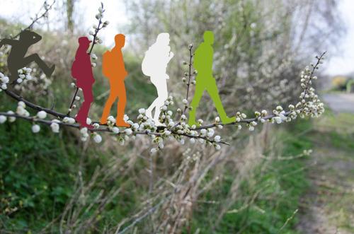 Kom en ontdek de groenpool Vinderhoutse Bossen