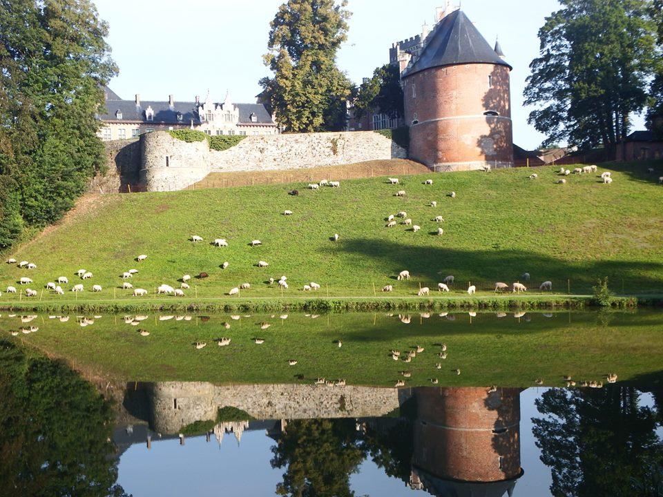 Park Gaasbeek, (c) Regionaal Landschap Pajottenland & Zennevallei