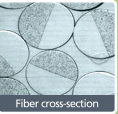 The cross section shows the combination of two distinct nylon polymers.