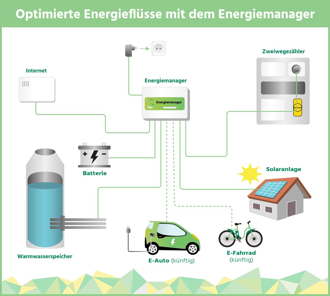 shine Infografik Energieflüsse
