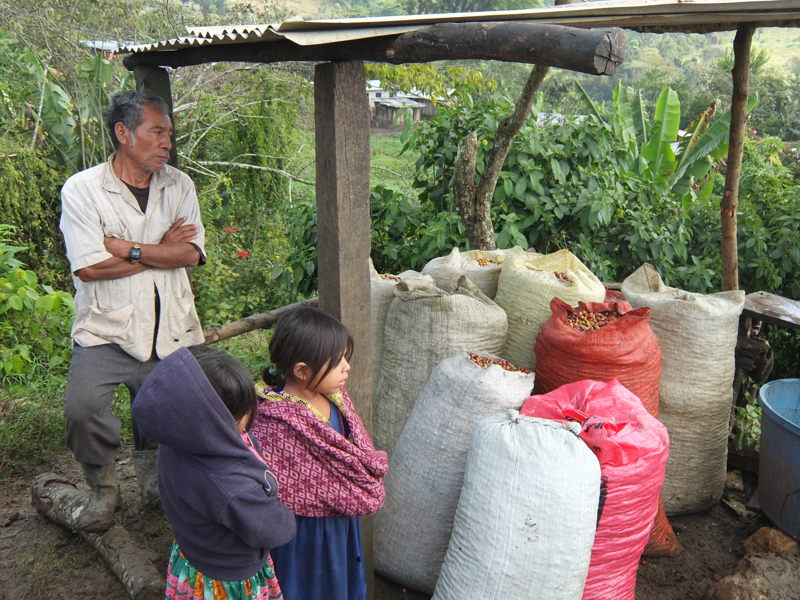 The circle of cooperation benefits farmers and their families.