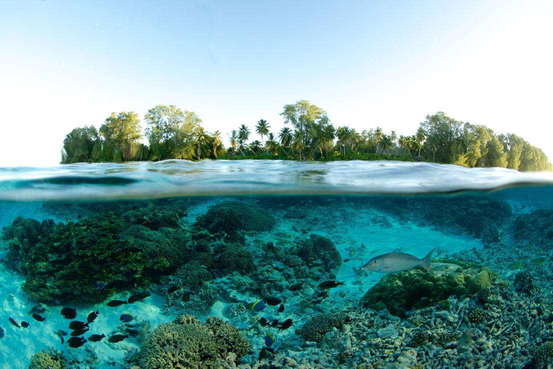 Copyright: Seychelles Tourist Board