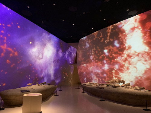 History in Motion: WSDG Acoustic Modeling Perfects Immersive Exhibits at the National Museum of Qatar