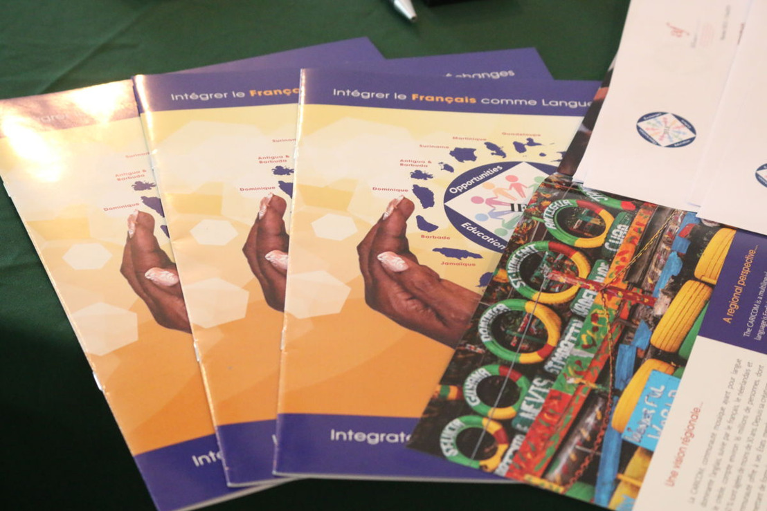 COVID-19 : le projet IFLE CARICOM passe en mode digital