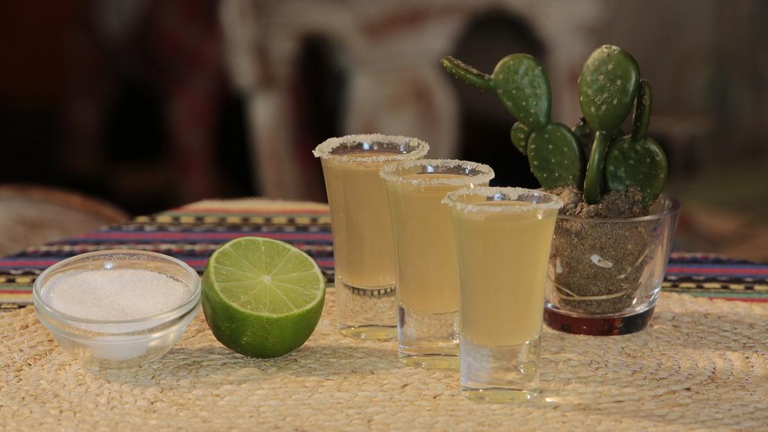 ¡No can-ce-les el ma-ria-chi! Kit para una noche mexicana é-pi-ca