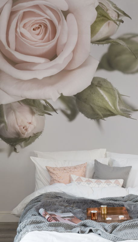 Elegant Pink Rose Wallpaper Mural