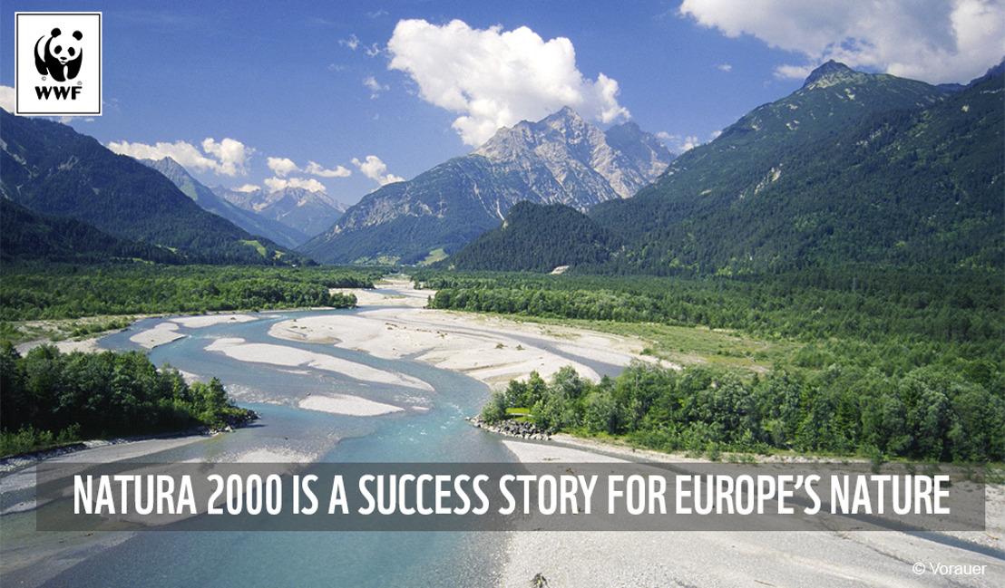 La moitié des réserves naturelles d'Europe sont protégées seulement sur papier : cela doit changer selon le WWF
