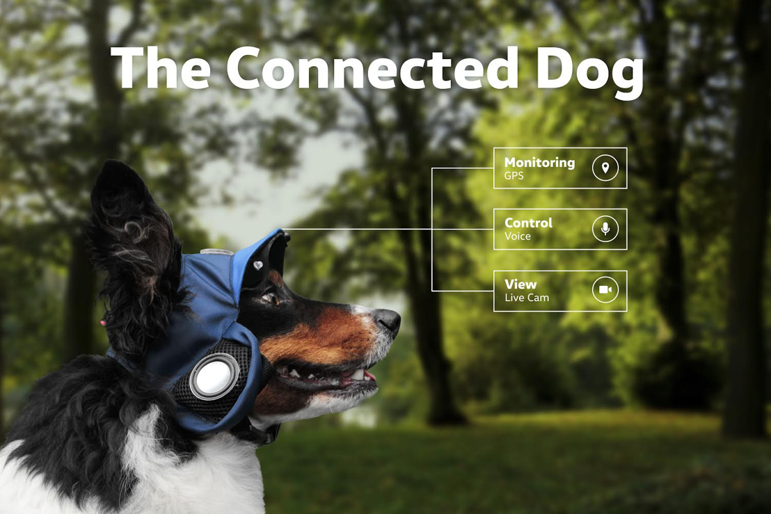 Volkswagen presenteert de 'Connected Dog'.