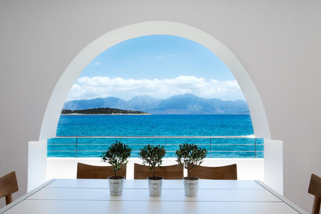 bluegr Hotels & Resorts in the Christmas spirit