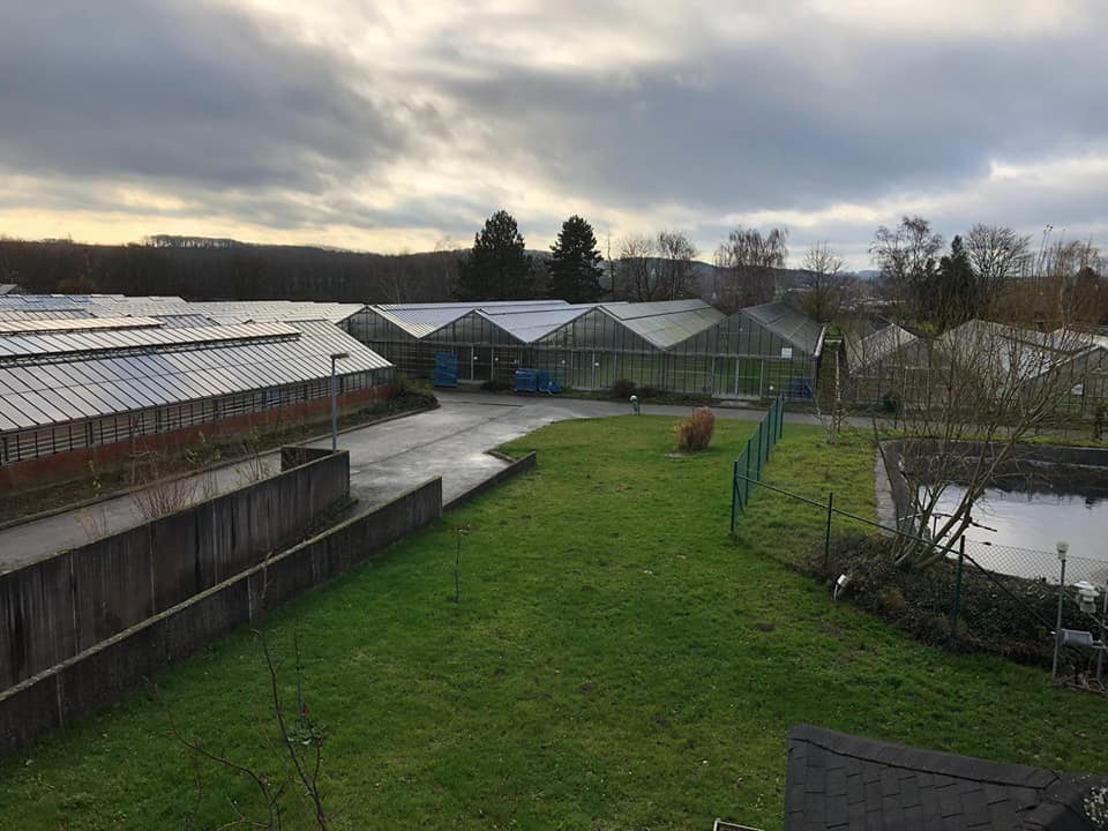 Site Tuinbouwschool in Roosdaal wordt Provinciaal Plattelandscentrum Peerenbosch