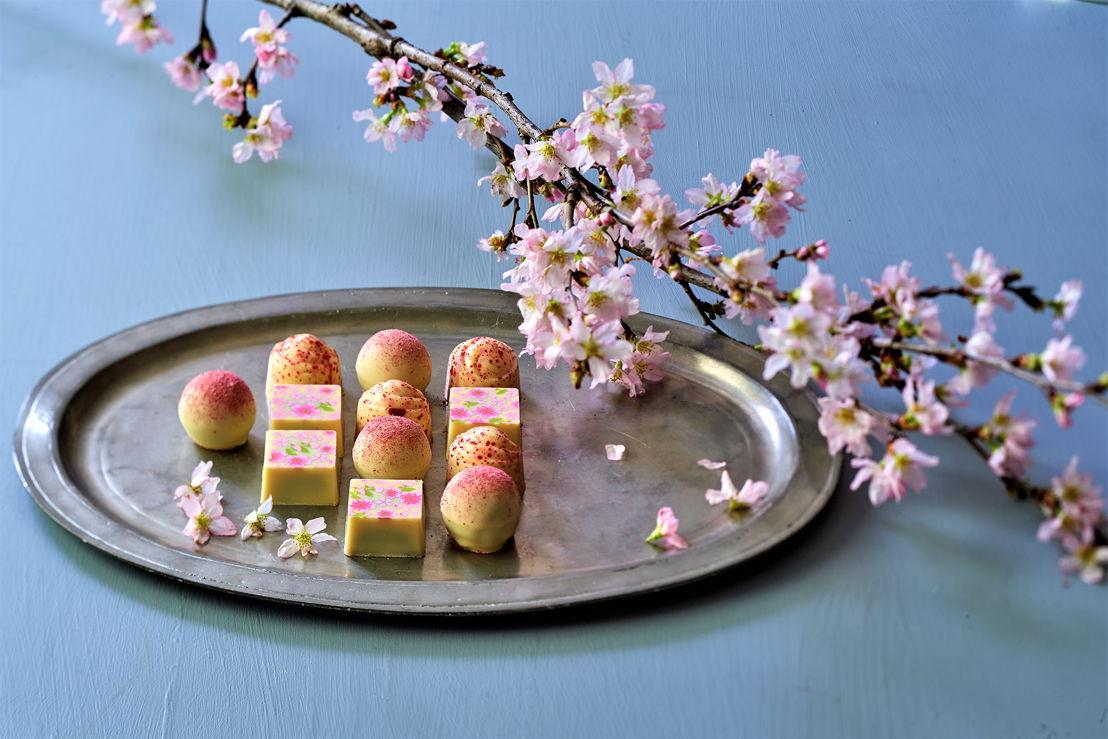 The Peninsula Tokyo: Sakura Chocokate Box