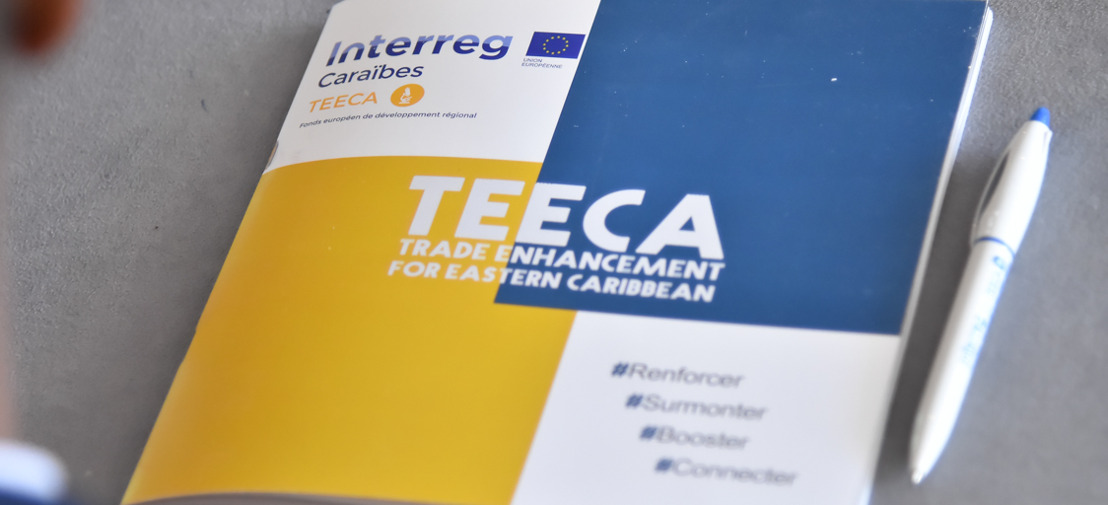 Enhancing Trade and Investment: TEECA Programme hosts Business Retreat in Martinique
