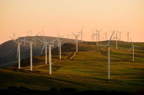 Climate Performance Index: België op plaats 32 van de 60!