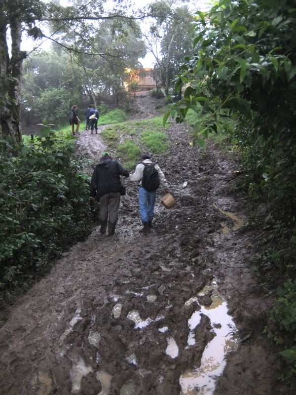 Visitors navigate one of the easier mountain trails.