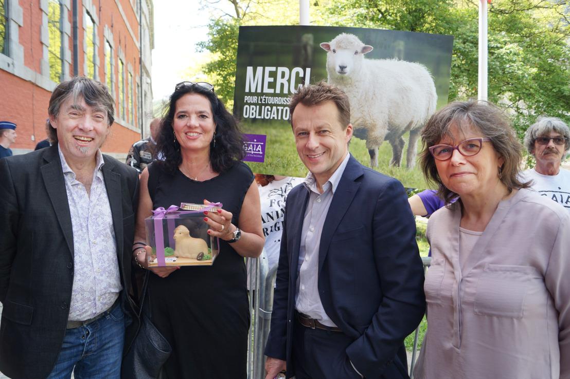 La Wallonie se prépare à interdire l'abattage sans étourdissement
