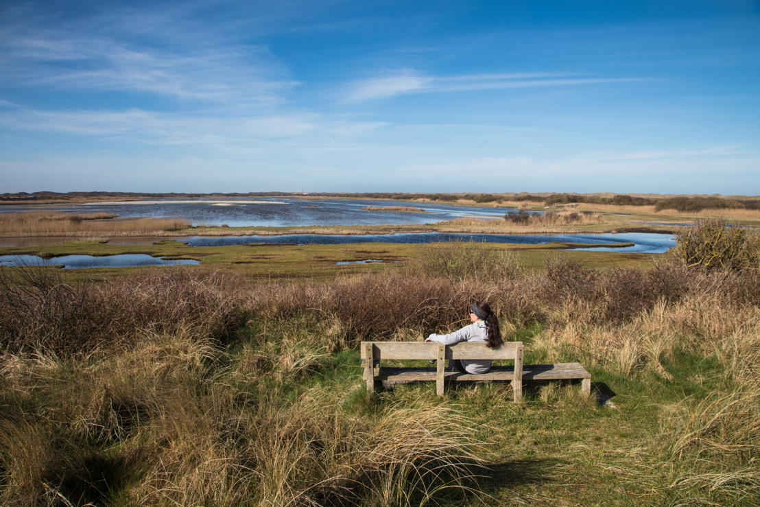 Woman sits on bench and overlooks wetlands at Kroon's Polders, Vlieland, West Frisian Islands, Friesland, Netherlands © Holger Leue for Merk Fryslan