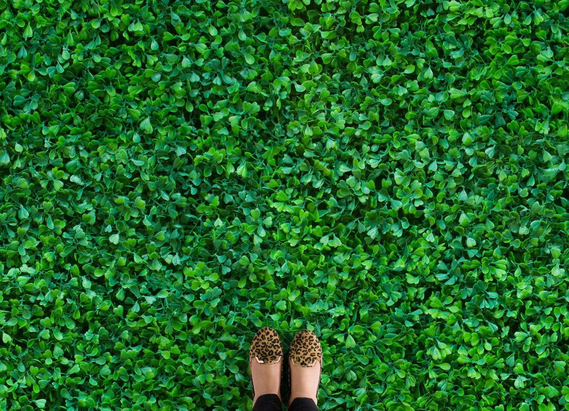 Clover | Plant Photographic Vinyl Flooring