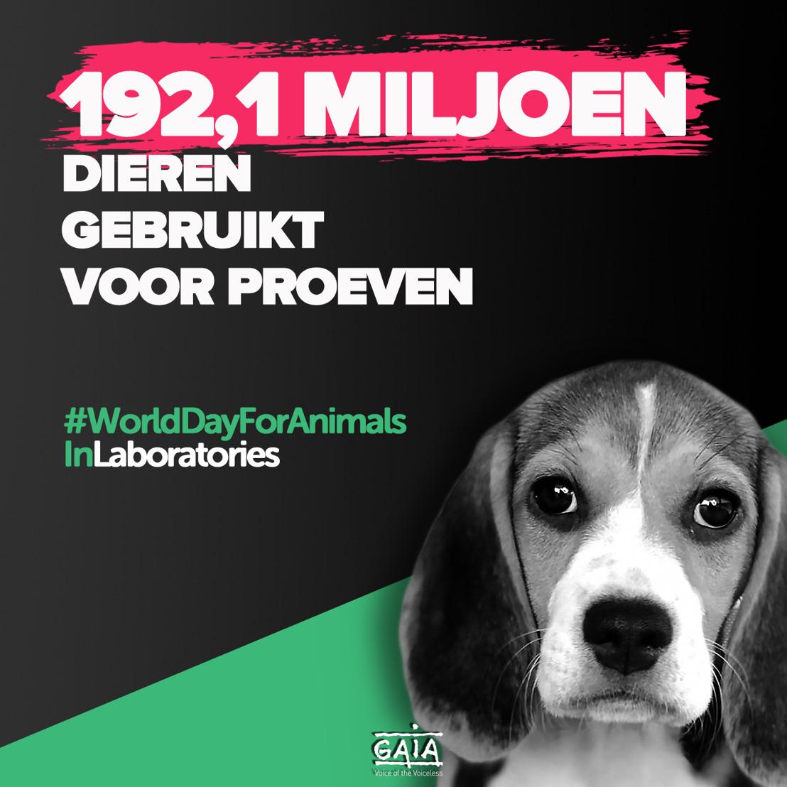 WERELDPROEFDIERENDAG // Nieuwe cijfers: wereldwijd 79,9 miljoen dierproeven