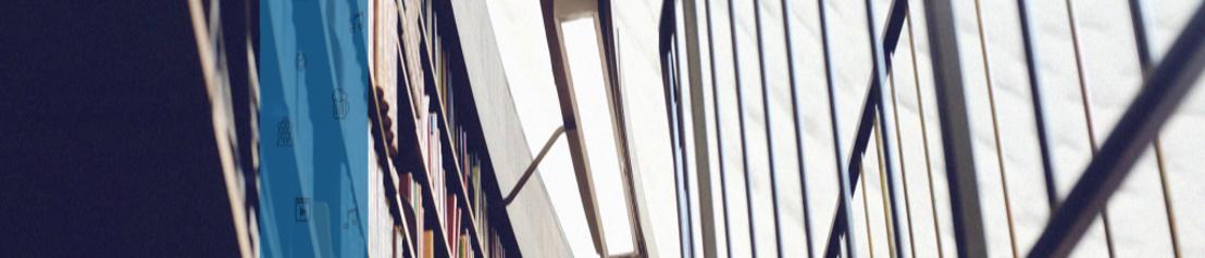 Brussel en Vlaanderen ondersteunen Brussels Art Institute