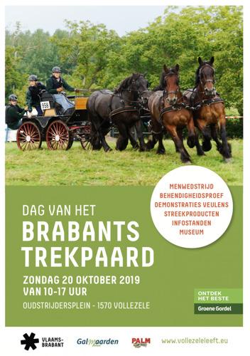 Dag van het Brabants Trekpaard op 20 oktober