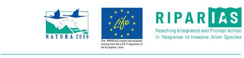 Lancement de LIFE RIPARIAS: 7 millions d'euros pour lutter contre les espèces exotiques envahissantes en Belgique