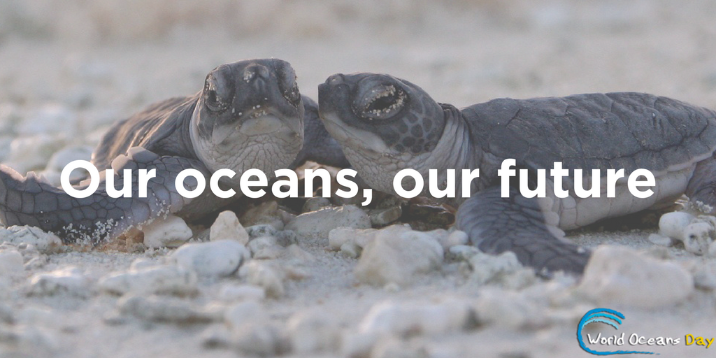World Oceans Day graphic