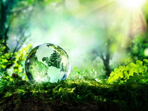 KBC publishes transparent report on progress on sustainability