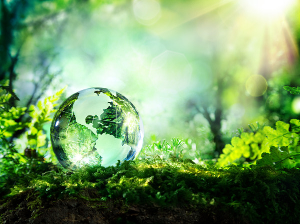 Preview: KBC publishes transparent report on progress on sustainability