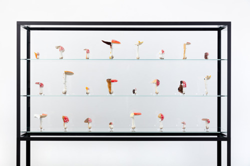 Be-Part brengt werk van Zuid-West-Vlaamse hedendaagse kunstcollecties samen in een unieke tentoonstelling