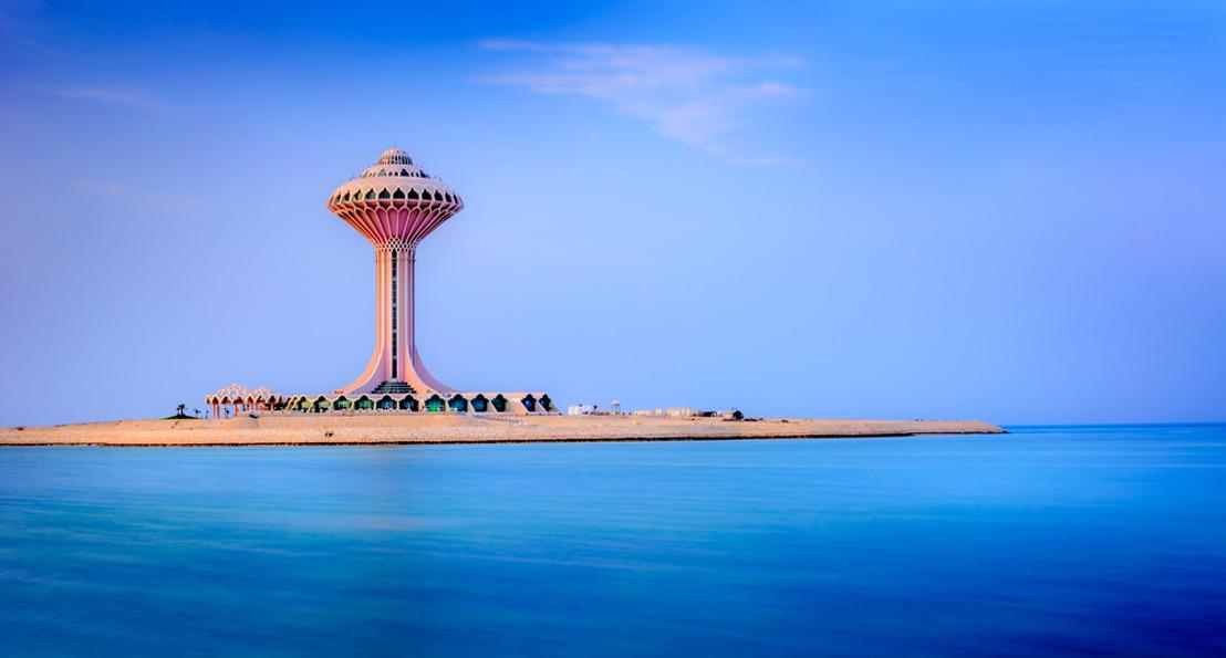 فلاي دبي تحتفل بذكرى اطلاق 3 وجهات الى السعودية