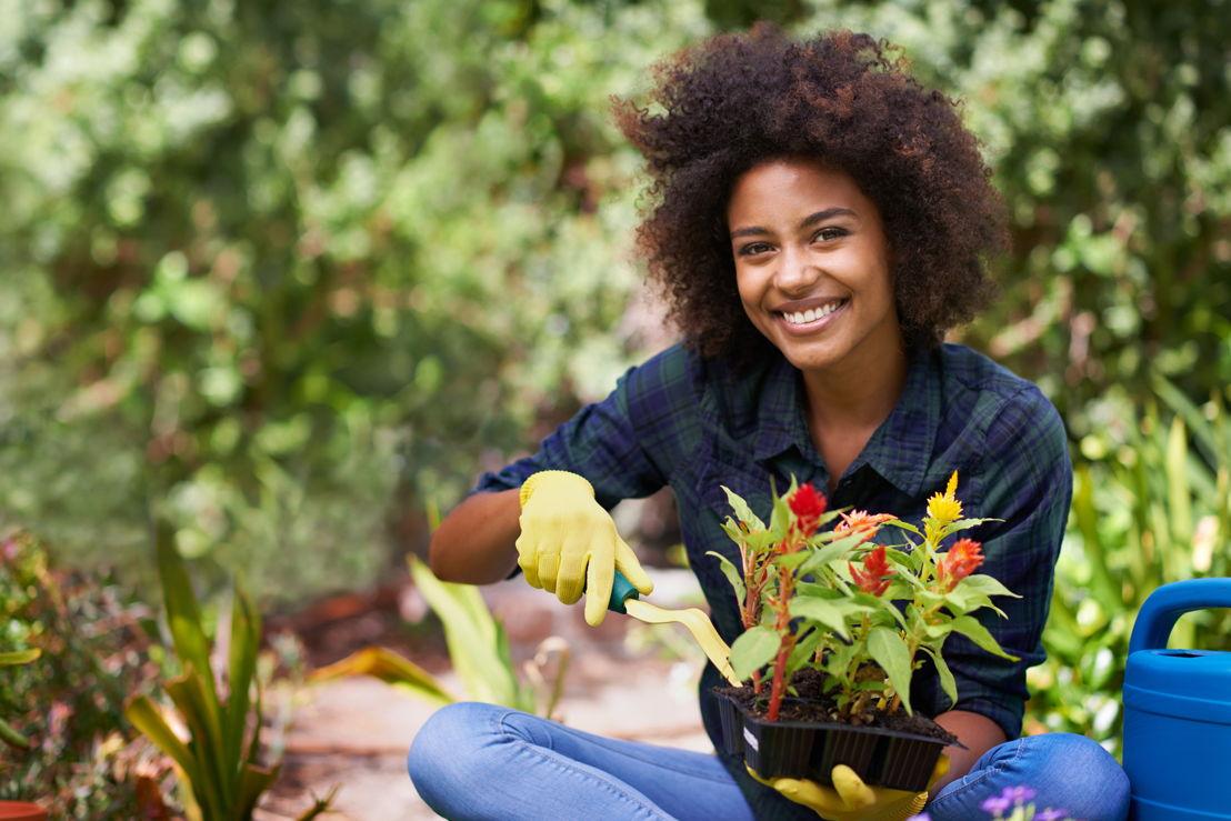 Flower Gardening for Beginners (photo credit Pike Nurseries)