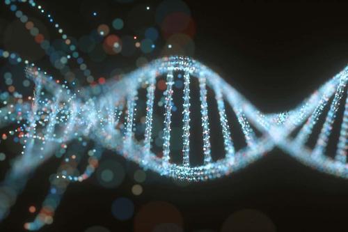 ROI genome