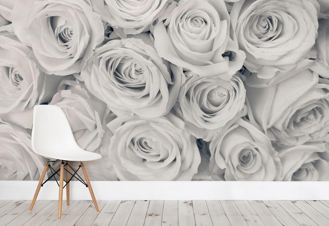 Rose Mist Wallpaper Mural