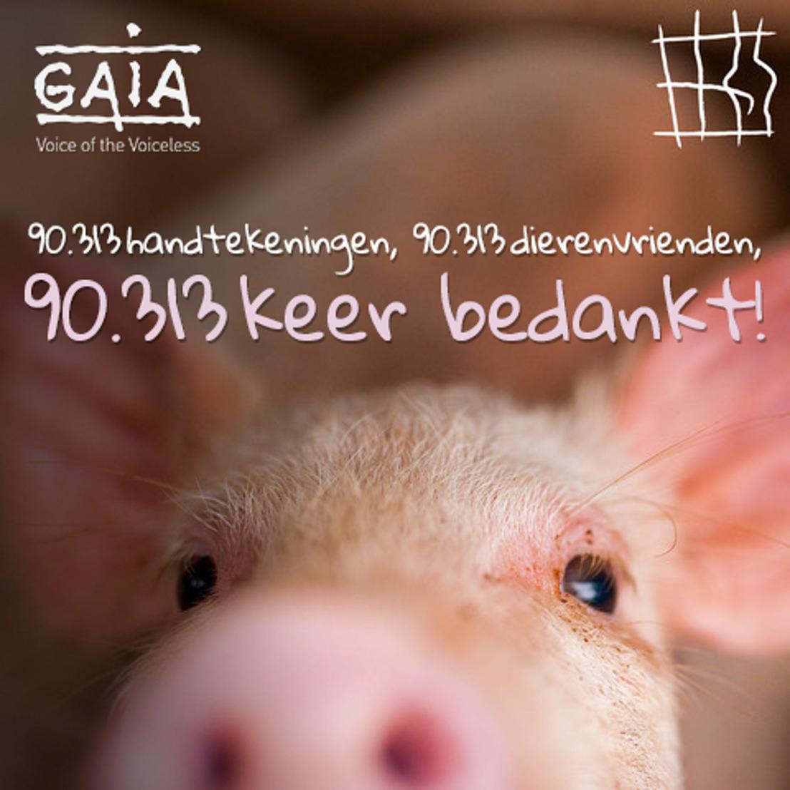 Grootste Europees burgerinitiatief ooit: 'Stop de kooien' sluit af met 1,5 miljoen handtekeningen