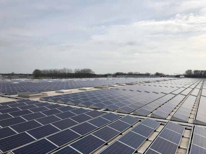 Lidl houdt producten vers dankzij 7.200 zonnepanelen op distributiecentrum Sint-Niklaas