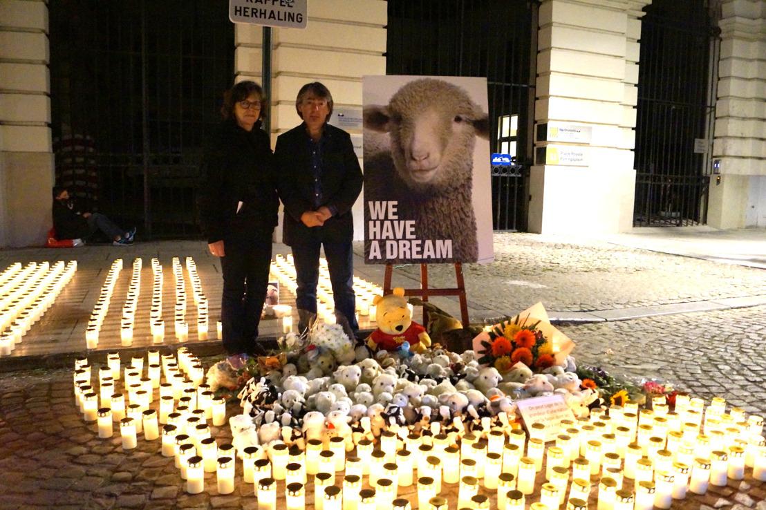 GAIA nachtwake voor onverdoofd geslachte dieren tijdens offerfeest