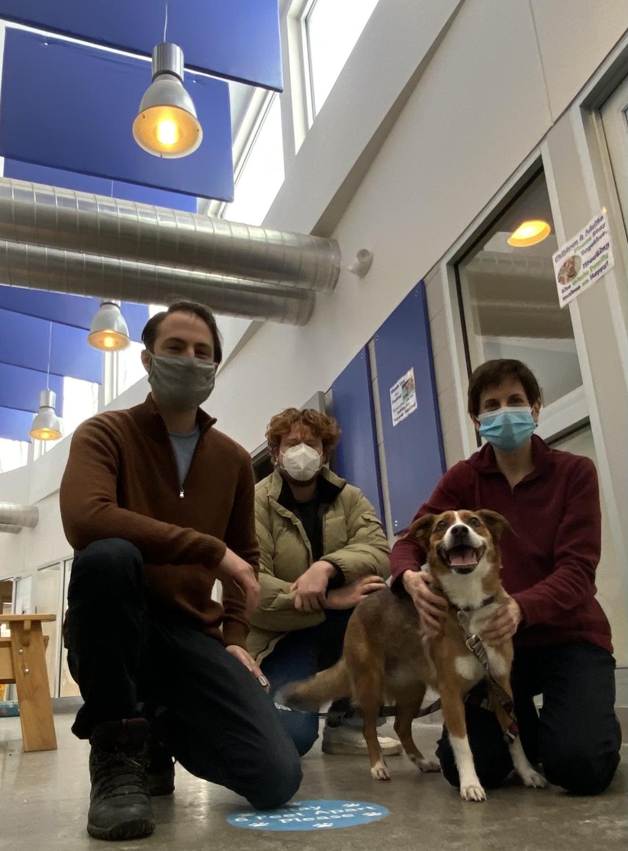 Barking Echoes Drive Dutchess County SPCA Residents (& Staff) Wild