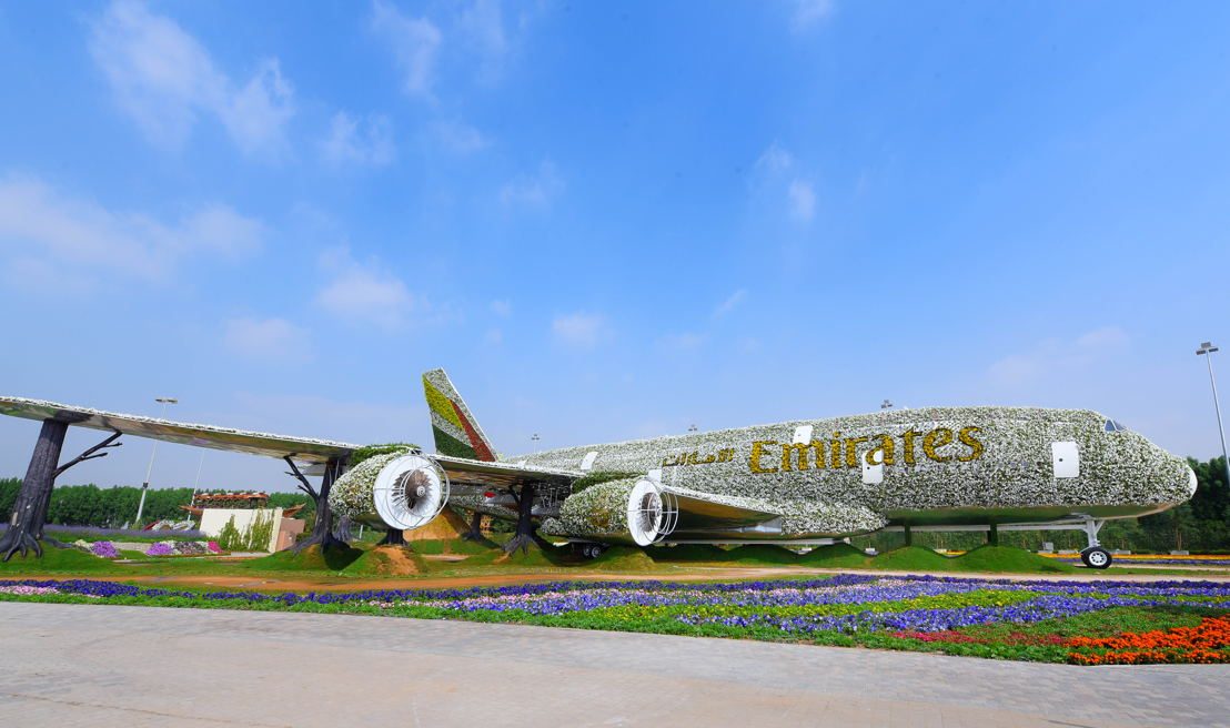 Emirates Airline Has Teamed Up With Dubai Miracle Garden To Construct The Worlds Largest Floral Installation