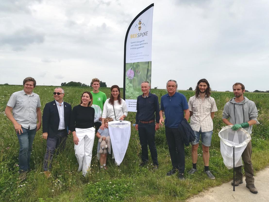 Bijna 12 voetbalvelden bijvriendelijke natuur dankzij Europees project Beespoke